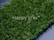Happy gras Basic 20