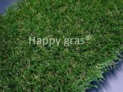 Happy gras Ultra 70